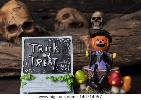 Pumpkin (Jack-o-lantern) in witch suit sitting on a tree with trick or treat board over four human skull background, Halloween concept