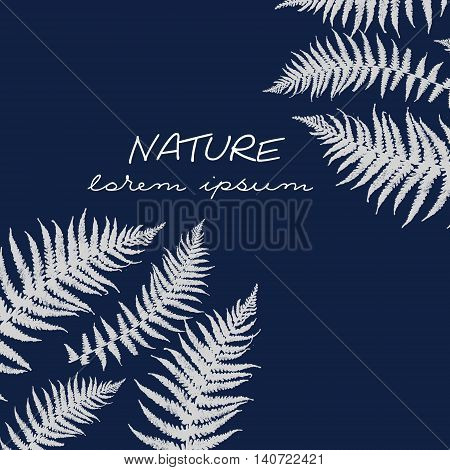 Illustration of fern branches. Hand drawn. Print with fern branches