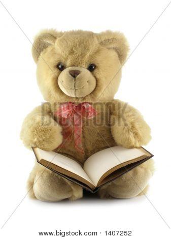Teddy Bear With A Book