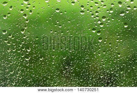 Raindrops on the window nature background with copy space