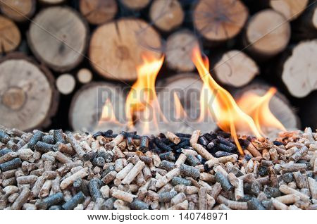 Different kind of wooden pellets ina flames