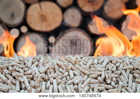 Burning Oak pellets in front a pileof woods