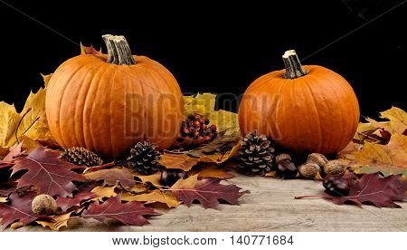 Pumpkins With Autumn Leaves For Thanksgiving Day On Black Backgr