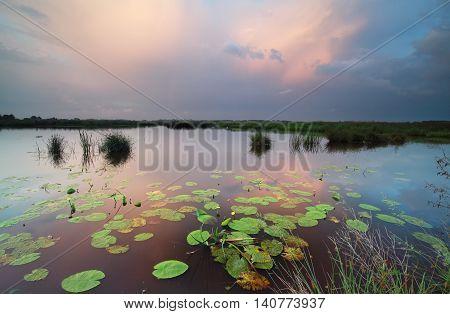 rainy sunset on wild lake with reflected sky