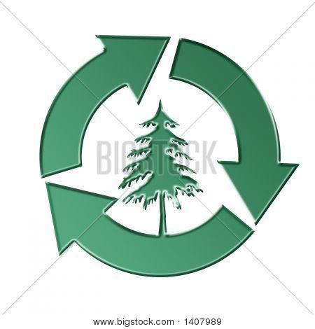 Erhaltung von Bäumen