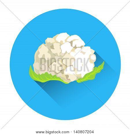 Cauliflower Colorful Vegetable Icon Flat Vector Illustration