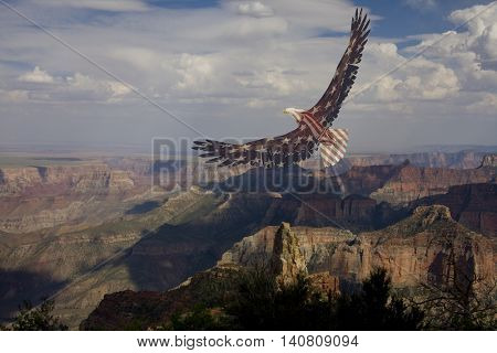 American Flag Eagle Soars over Grand Canyon 3D Render