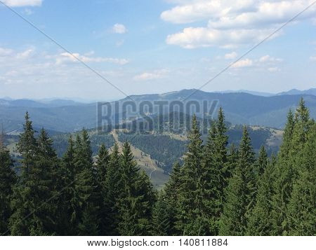 Romania, August 2015, Ceahlau Massif, Moldova, View over the mountains tops through the tall fir trees