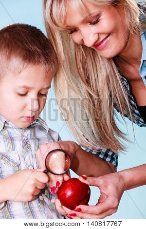 Early education nature and biology. Mother help son examine fruit apple with magnifying glass. Teacher help discover environment.