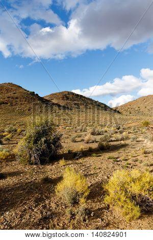 Three Mountains View - Klaarstroom Landscape