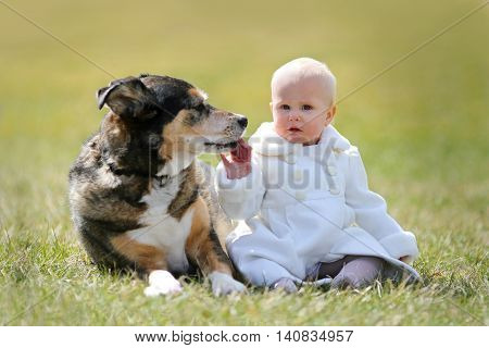 Precious 1 Year Old Baby Girl Sitting Outside With Pet Dog