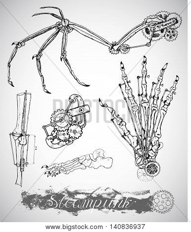 Fantasy monster wing, leg and hand with vintage mechanism in steam punk style. Bones and retro machines. Hand drawn illustration, sketch tattoo, old black and white science set with lettering