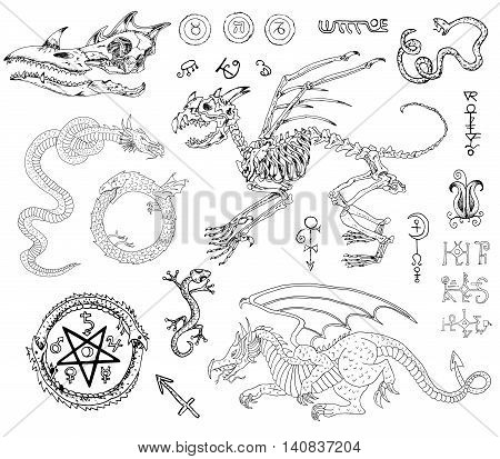 Graphic set with monster skeleton and skull, dragons, snake, lizard and mystic symbols. Hand drawn illustration, sketch tattoo, old black and white collection of fable or fantasy animals