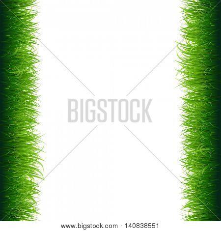 Green Grass Frame, Vector Illustration