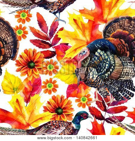Autumn watercolor seamless pattern with turkey bird pheasant and autumn leaves and flowers on white background. Hand painted fall illustration