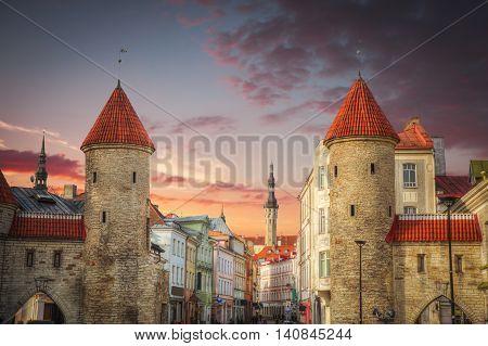 Town Hall Square Of Tallinn