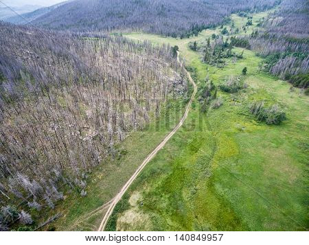 Old Flowers Road and a forest burned by wildfire - aerial view. It is a popular jeep trail in Roosevelt National Forest near Fort Collins, Colorado