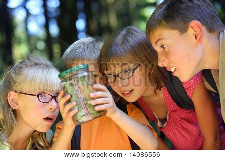 Children looking at bug in jar
