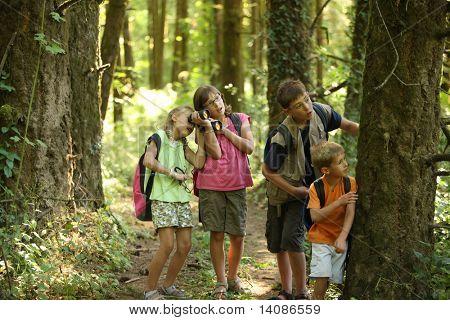 Children looking into woods