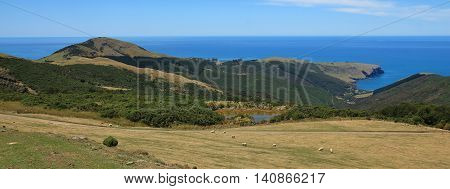 Beautiful landscape on the Banks Peninsula New Zealand. Rural landscape and Pacific Ocean.