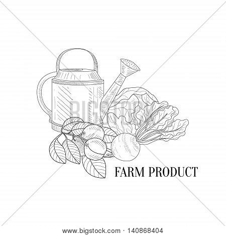 Farm Vegetables Hand Drawn Realistic Detailed Sketch In Classy Simple Pencil Style On White Background
