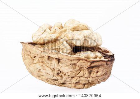 Single walnut with half nutshell isolated on white background close up