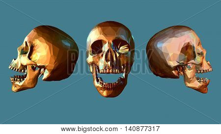 Bright low poly skull in various view on turquoise background