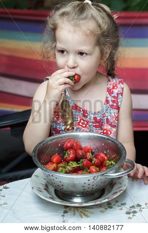 Portrait of little girl is eating sweet red strawberry fruits from cullender