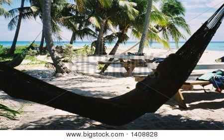 Hammock At The Beach