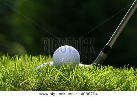 Golf club with ball on grass