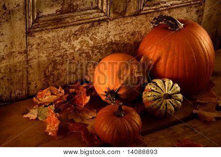 Ernte fallen / Kürbisse und Kalebassen an der Tür bereit für Halloween / Sepia Ton