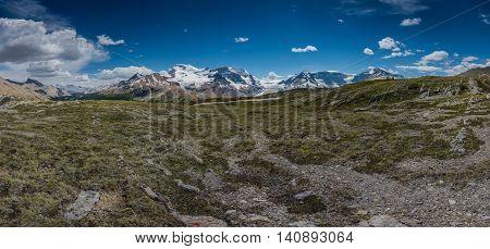 Wilcox Pass Panorama