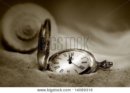Watch lost in the sand with seashell behind/ Sepia tone