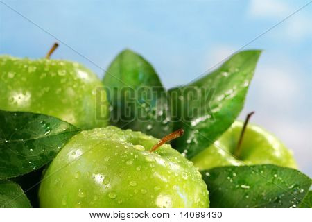 Green apples with leaves against a sunny blue sky