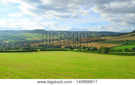 Farmland in East Devon AONB (Area of Outstanding Natural Beauty)