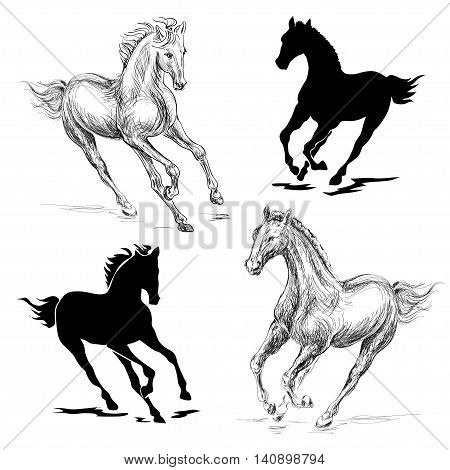 vector illustration of a galloping horse on a white background