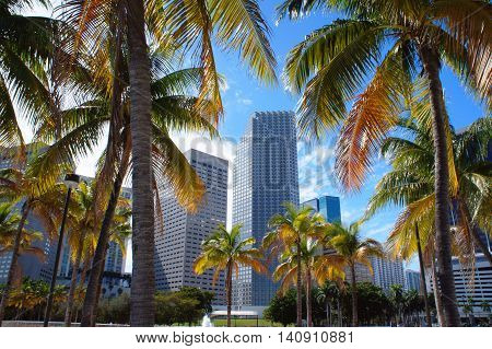Miami Downtown skyline view from Bayfront park United States