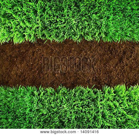 Kurze grünes Gras und Erde Hintergrund braun