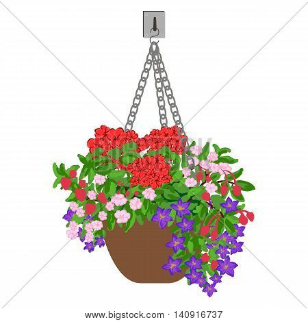 Vector colorful illustration of hanging pot with flowers. Floral arrangement.