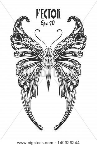 butterfly charcoal sketch vector eps 10 design.