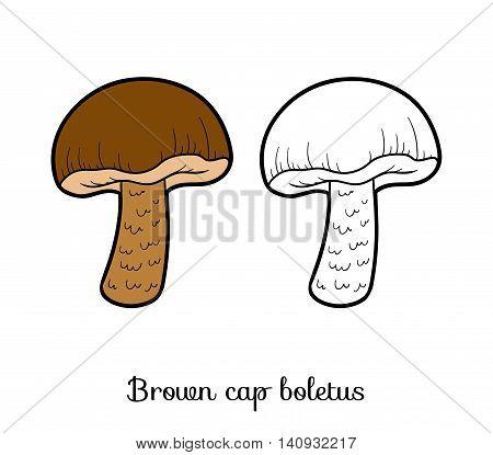 Coloring Book. Edible Mushrooms, Brown Cap Boletus