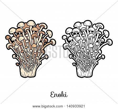 Coloring Book. Edible Mushrooms, Enoki