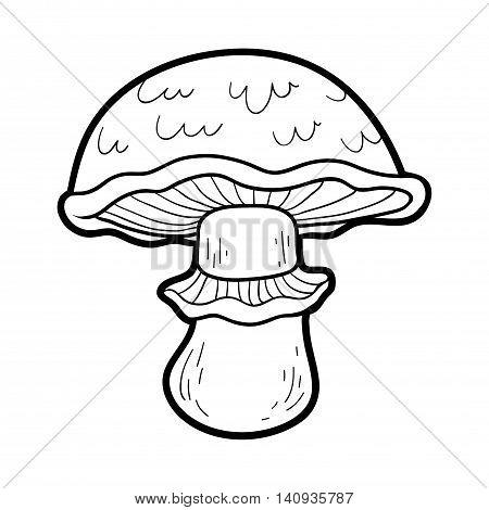 Coloring Book. Edible Mushrooms, Portobello
