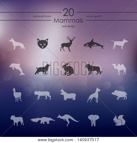 mammals modern icons for mobile interface on blurred background