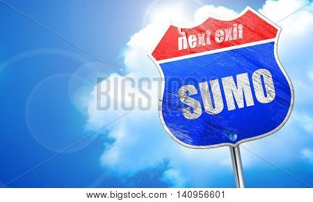 sumo sign background, 3D rendering, blue street sign