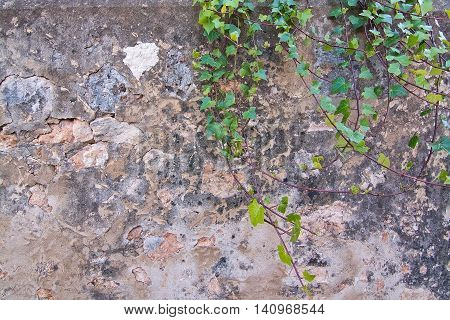 Stone Or Concrete Abstract Background Wall