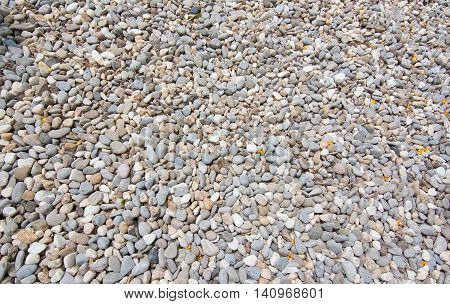 Gravel stone closeup background texture with calcium beach rocks