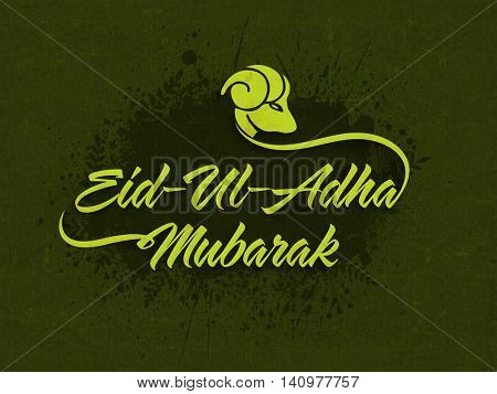Stylish Text Eid-Ul-Adha Mubarak with Sheep Face on abstract splash, green grunge background for Muslim Community, Festival of Sacrifice Celebration. Vector greeting card design.