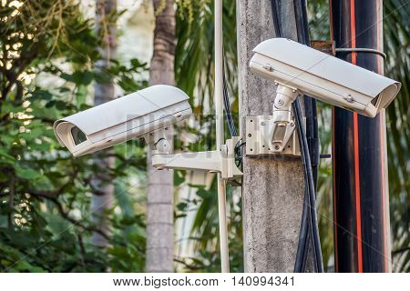 Outdoor security CCTV camera on poles and housing