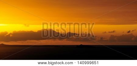 Yellowish Mustard Skyline